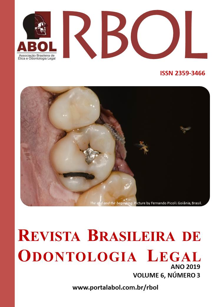 Visualizar v. 6 n. 3 (2019): RBOL
